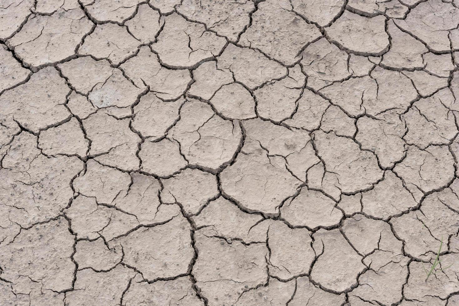 spaccare il terreno durante la stagione secca foto