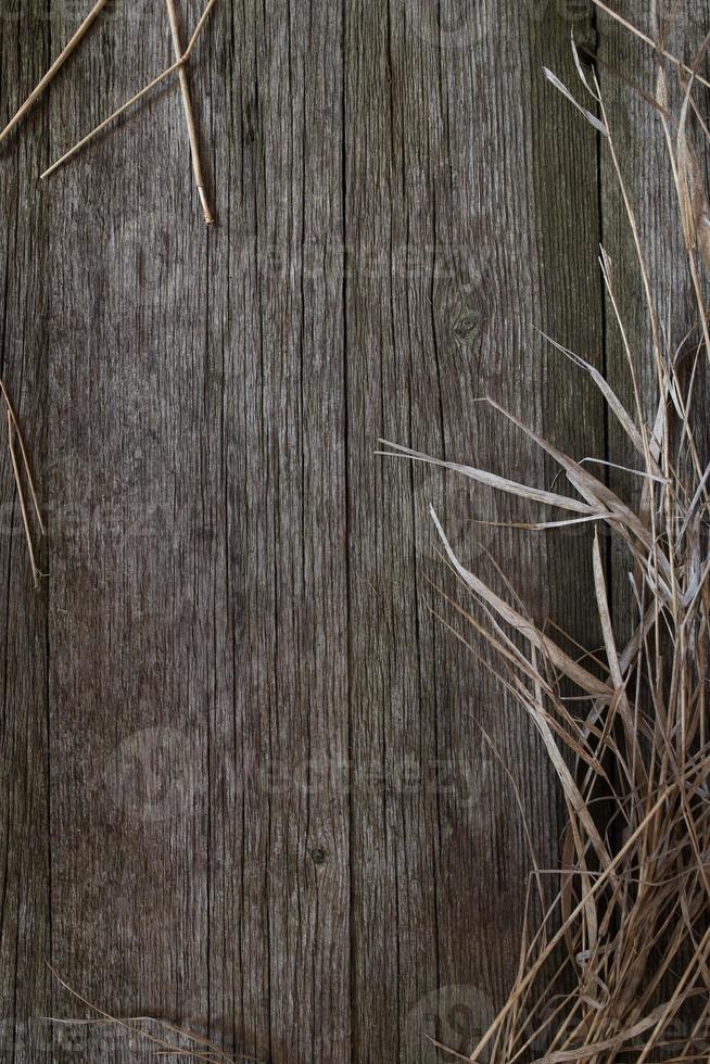 vecchio fondo di legno, superficie di legno rustica con lo spazio della copia foto
