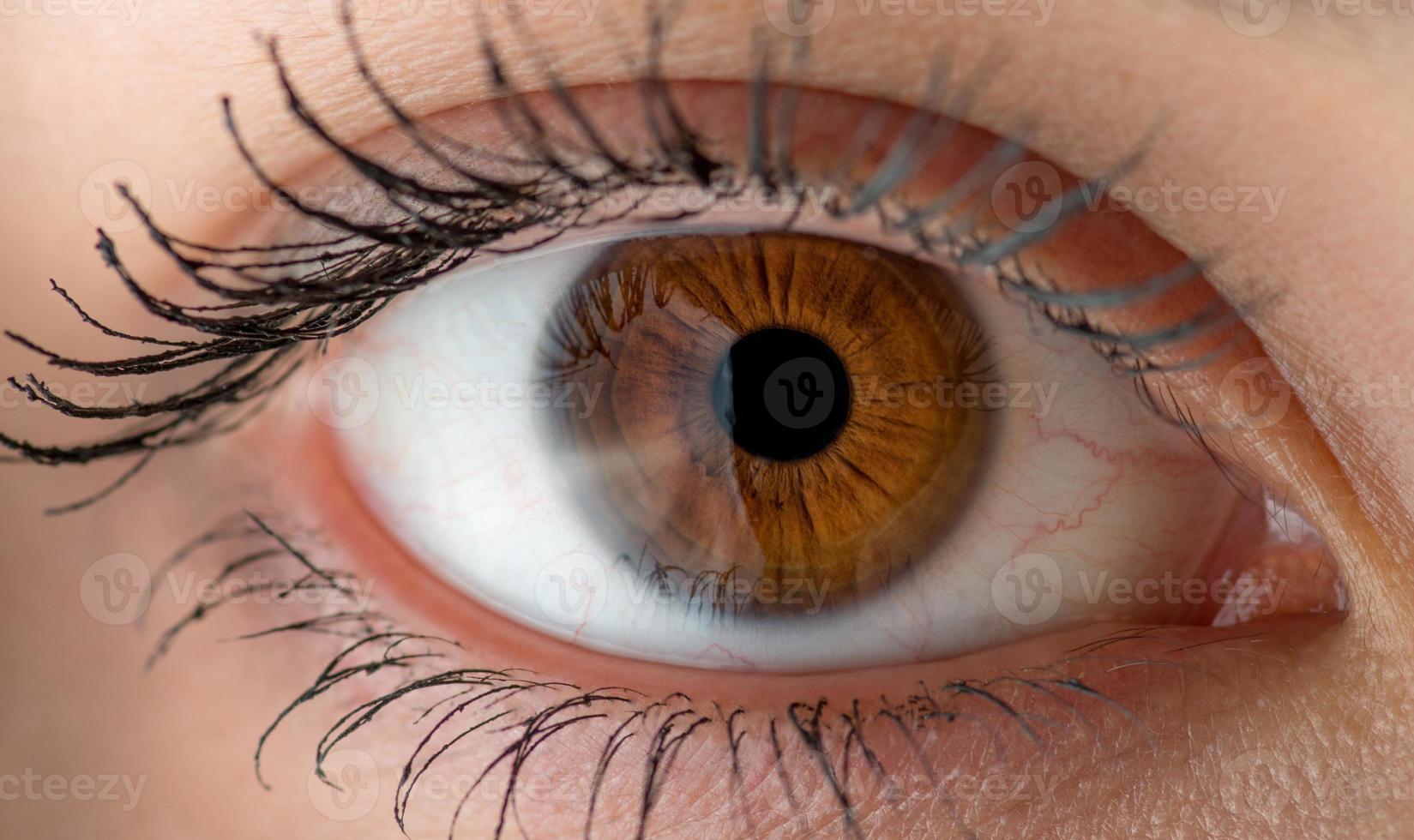occhio umano macro. foto