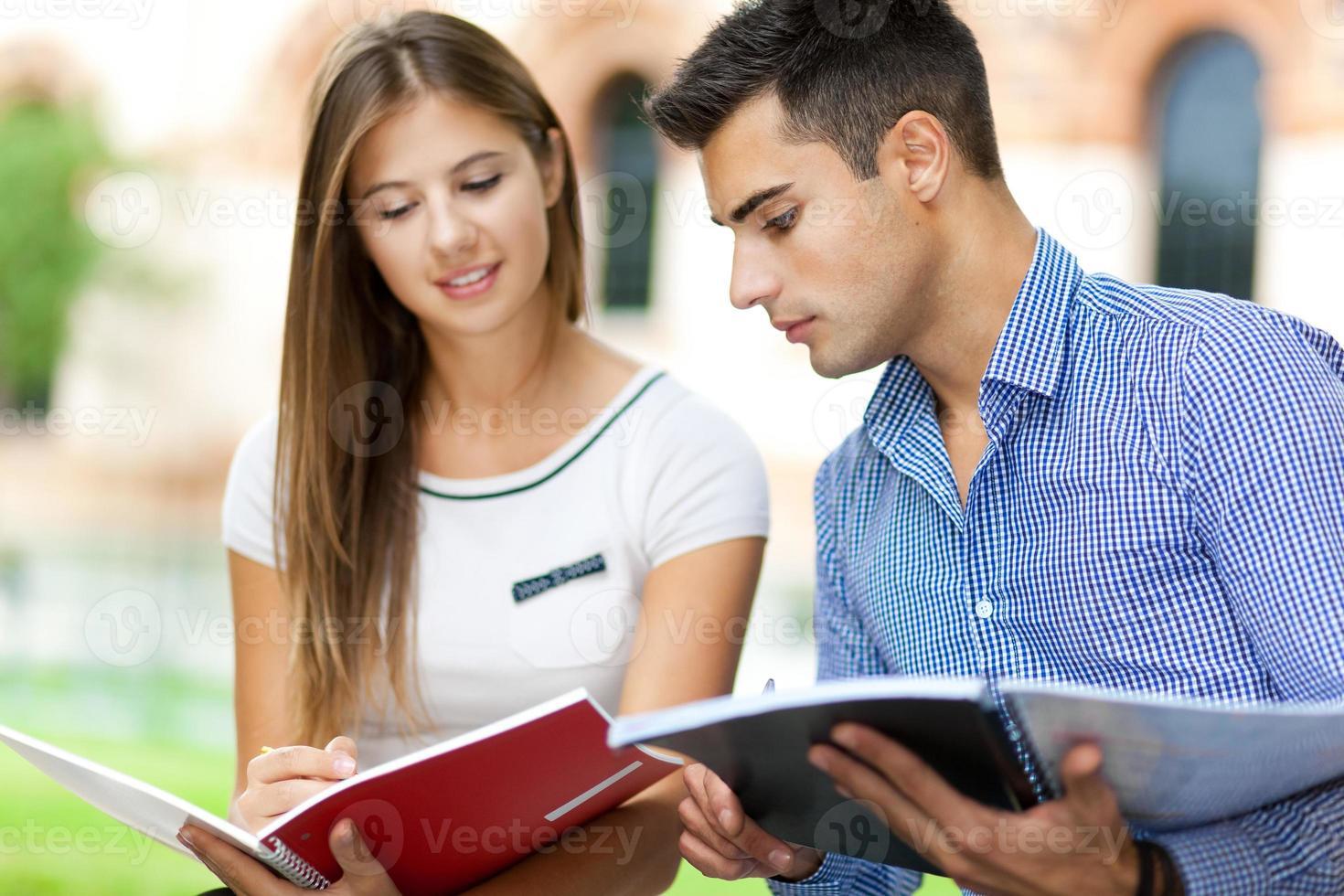 studenti che studiano in un parco foto