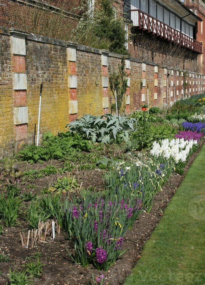giardino recintato foto