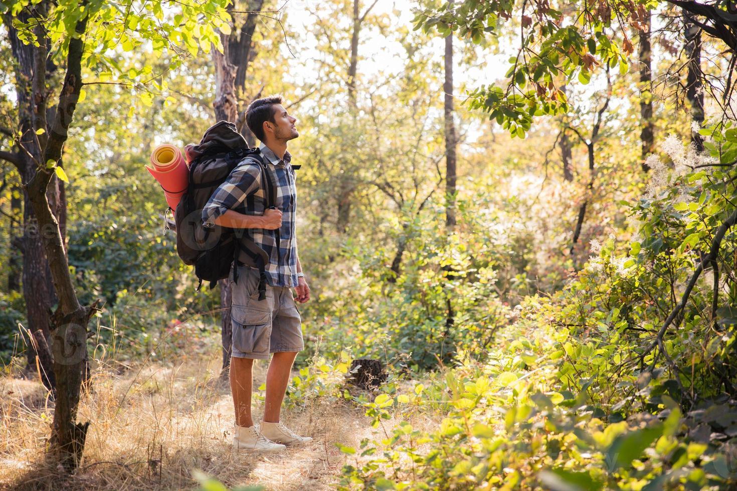 escursionista maschio che cammina nella foresta foto