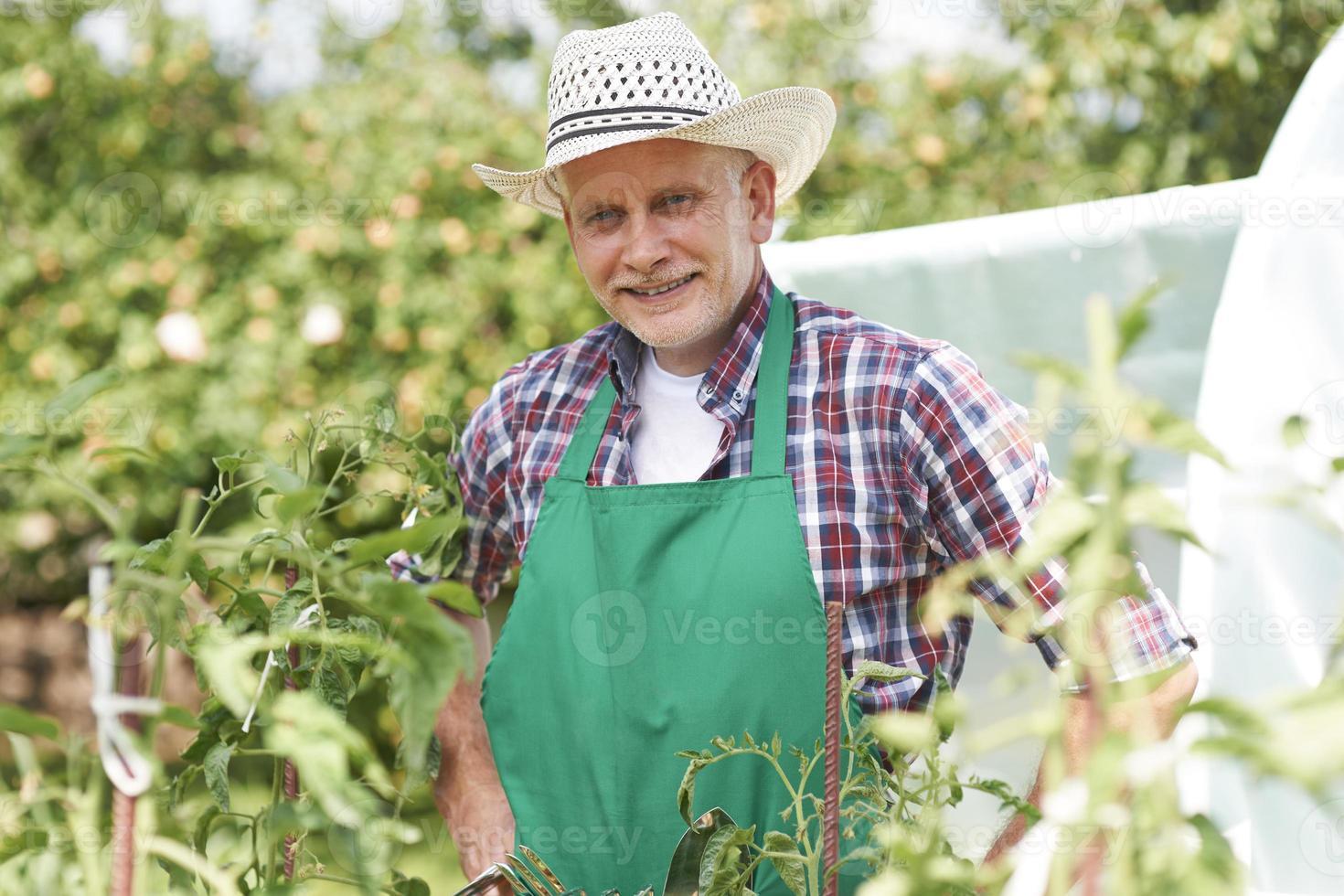 Ritratto di agricoltore maschio sul campo foto