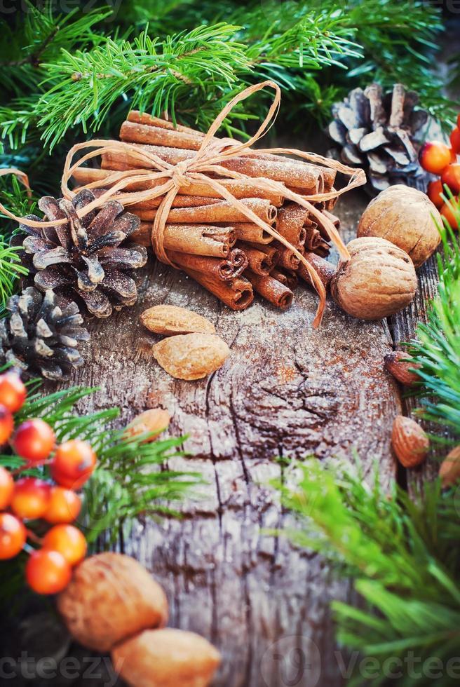 Biglietto natalizio. bastoncini di cannella, abete, cibo naturale foto