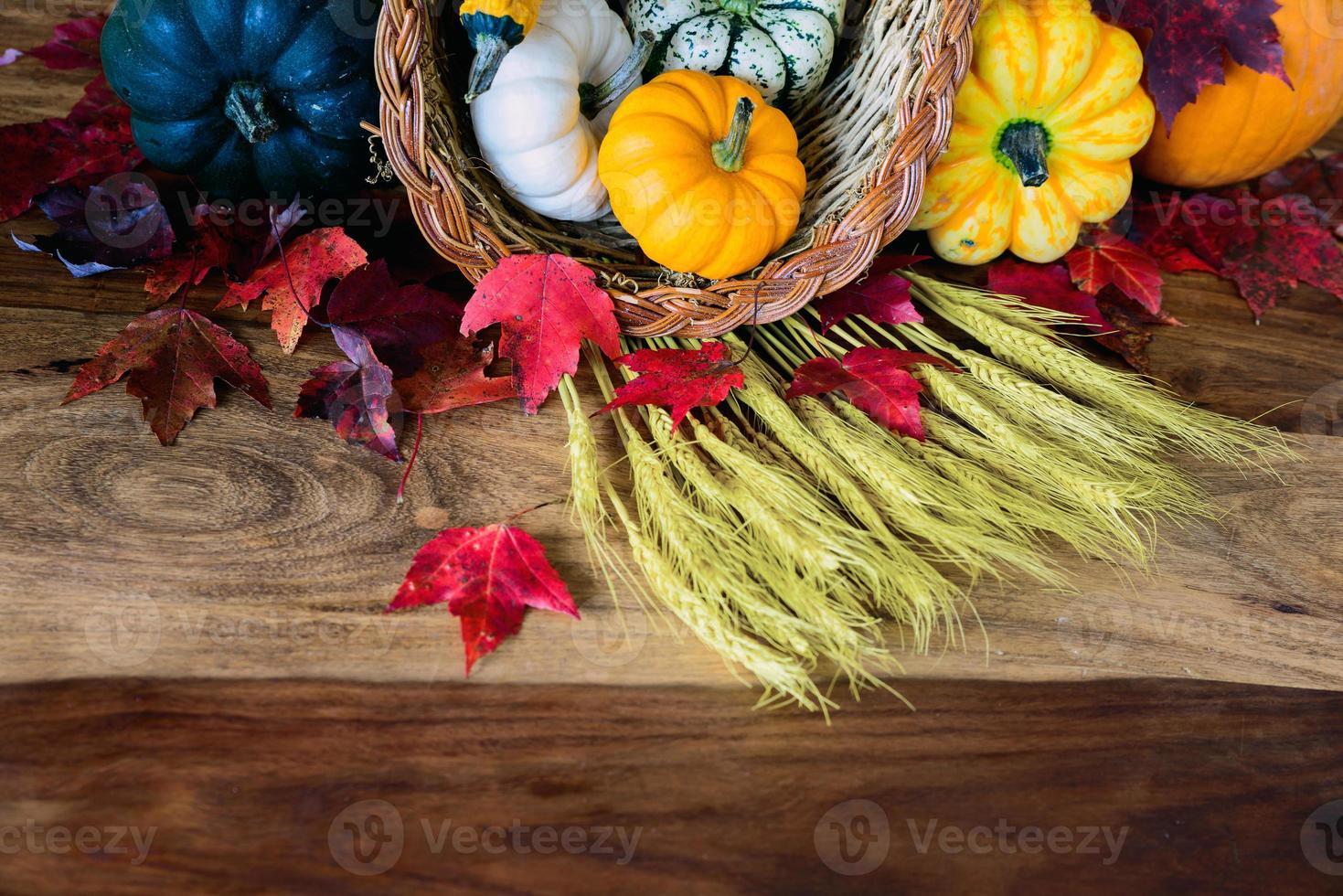 cornucopia sul tavolo di raccolta - parziale foto