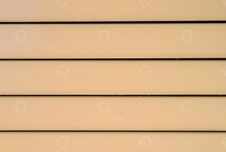 modello in legno. foto