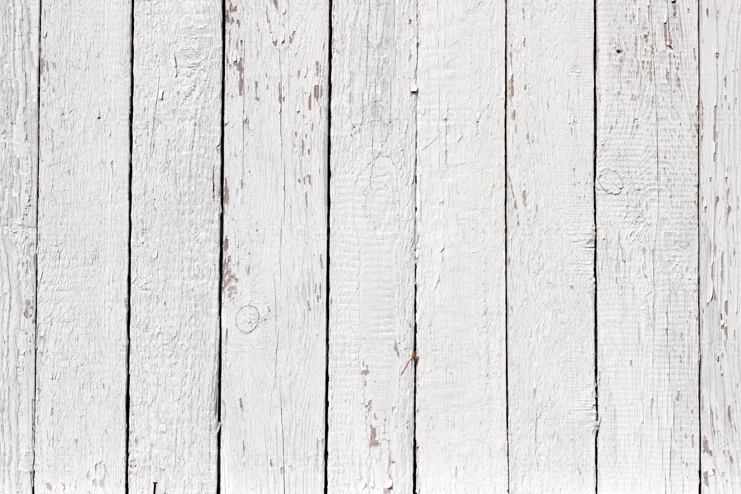 struttura di legno bianca con sfondo naturale modelli foto