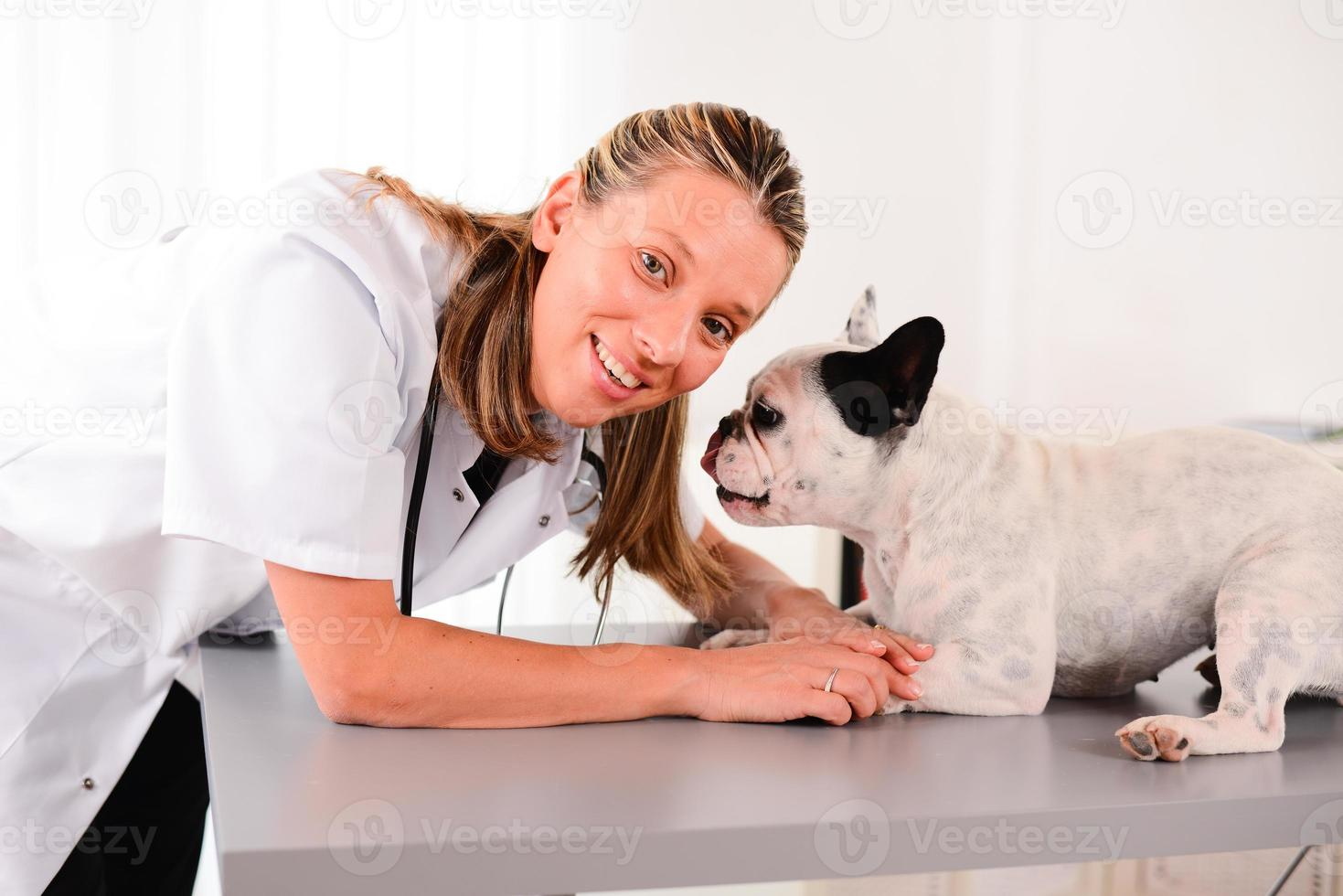allegro giovane veterinario biondo prendersi cura del cane bulldog francese foto