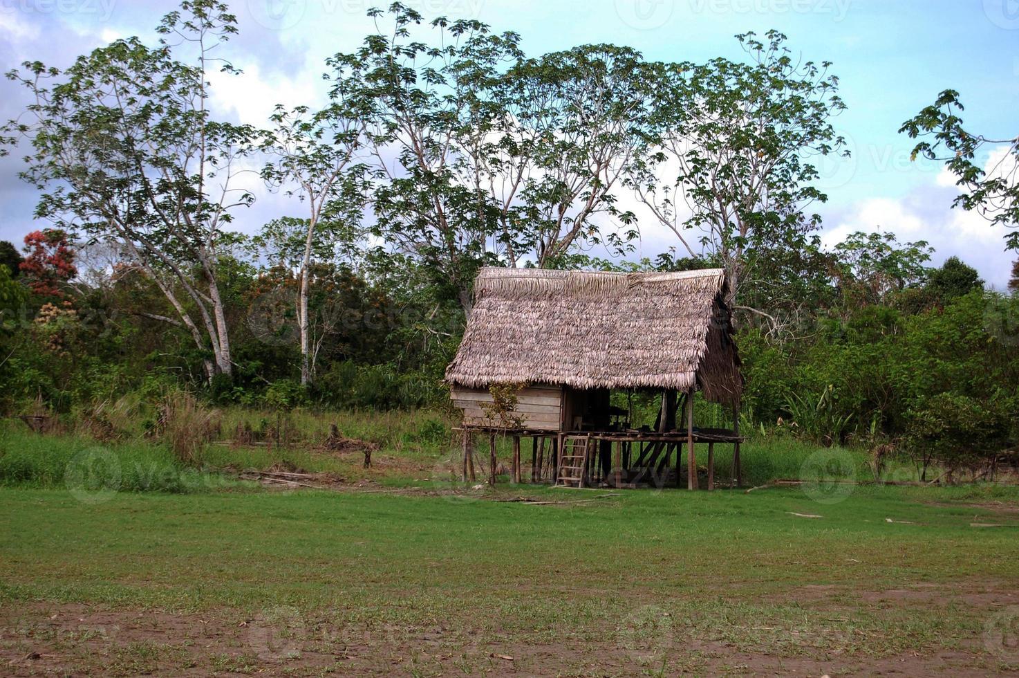 capanna singola della giungla amazzonica foto