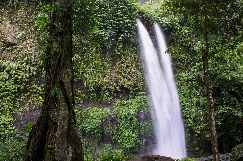 alta cascata tropicale nella giungla, vicino a senaru, lombok, ind foto