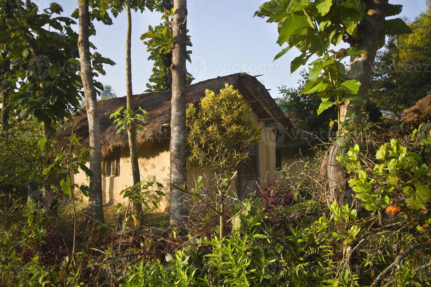 casa tradizionale terai nel mezzo della giungla, bardia, népal foto