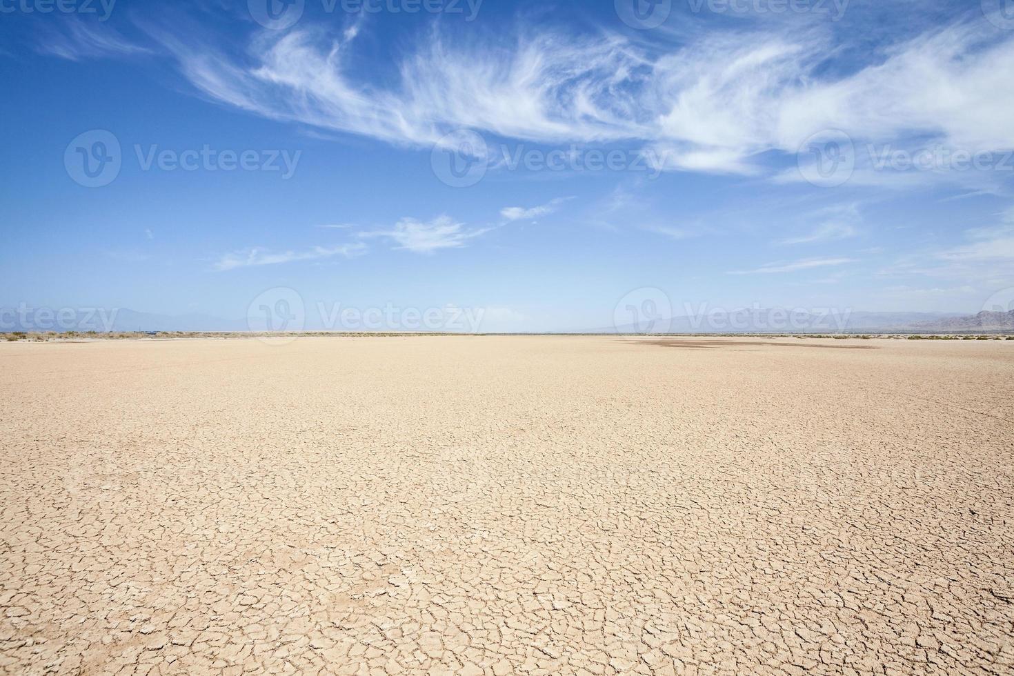 deserto della California foto