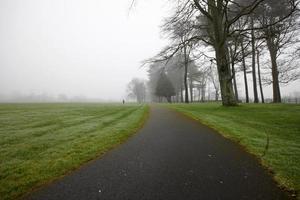 figura solitaria che si allontana dal sentiero nel bosco nella nebbia foto