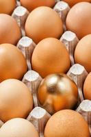 uovo d'oro in una fila di uova marroni