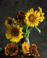 bellissimi girasoli in un vaso foto
