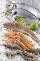 bancarella di pesce su ghiaccio tritato. supermercato, mercato dal vivo foto