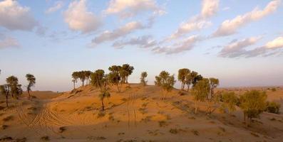 scena del deserto foto