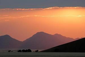 alba del deserto foto