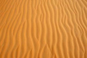deserto di Abu Dhabi foto