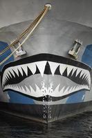 prua della barca