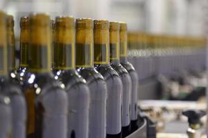 linea di trasporto per l'imbottigliamento del vino in bottiglia foto