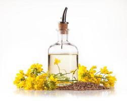 olio di colza su sfondo bianco foto
