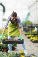 giovane donna che fa il giardinaggio in serra. foto