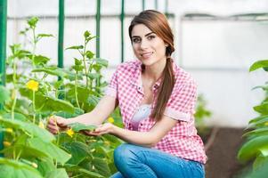 donna che fa il giardinaggio e che sorride alla macchina fotografica foto