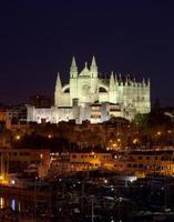 vista di palma di maiorca con la cattedrale di santa maria foto