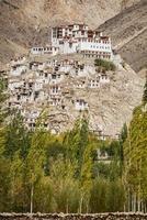 chemdey gompa, monastero buddista foto