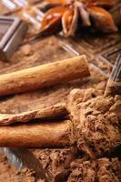 studio macro cacao in polvere cioccolato fondente e cannella foto
