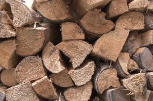 pile di tronchi