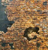 muro di mattoni arancione sullo sfondo foto