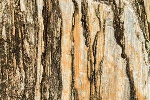 superficie dello sfondo di pietra grunge.