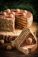 pezzo di torta al cioccolato foto