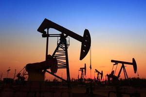 la pompa dell'olio