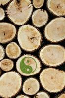 sfondo di tronchi accatastati con simbolo ying yang