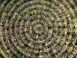 la trama di sfondo dei cerchi concentrici flosculari foto
