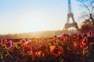 fiori vicino alla torre eiffel foto