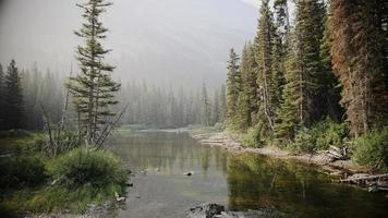 ruscello di montagna, aria fumosa e un pescatore foto