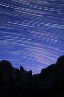 strisce di stelle nel parco di joshua tree foto