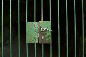 porta chiusa della gabbia foto