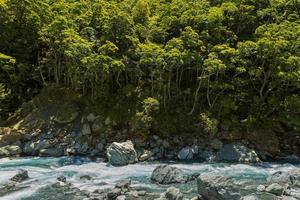 flusso blu e foresta di faggi foto