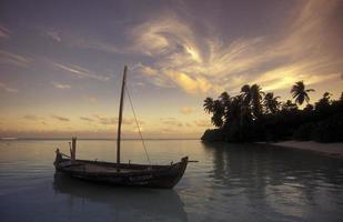 costa delle Maldive dell'oceano indiano foto