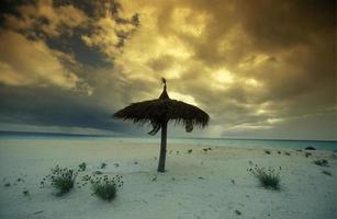 spiaggia delle Maldive dell'oceano indiano foto