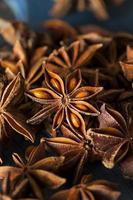 stella di anice secca biologica foto