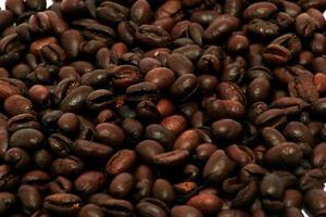 chicchi di caffè di peaberry foto