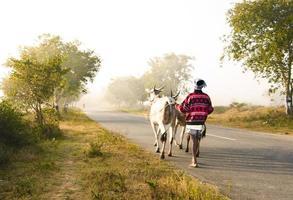 strada del villaggio indiano foto