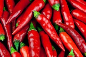 piccoli peperoncini rossi da vicino foto