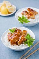 farina di pollo tailandese foto